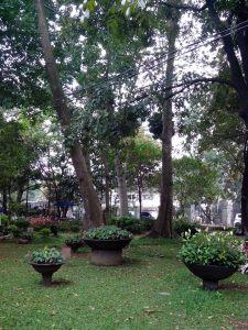 Keindahan di Taman Kandaga Puspa (Foto: Arya Vidya Utama)