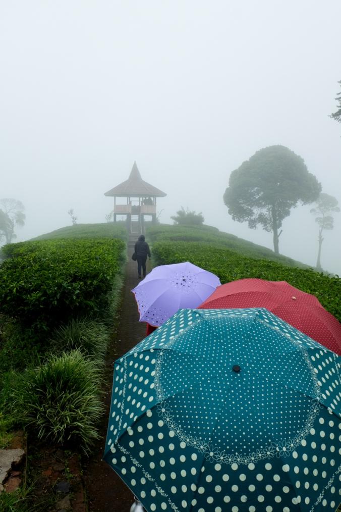 Menara Gunung Nini.jpg
