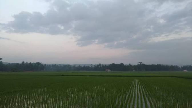 Menuju Mangir, Menyusur Pantai Selatan Jawa 3