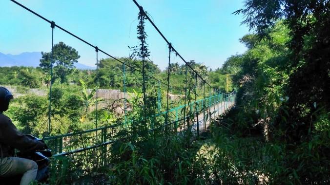 Bamboo House 9