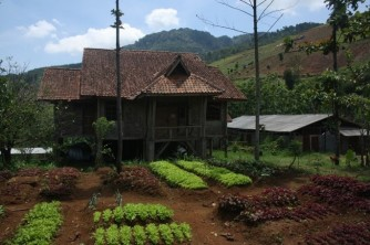 Gunung Mandalawangi 4